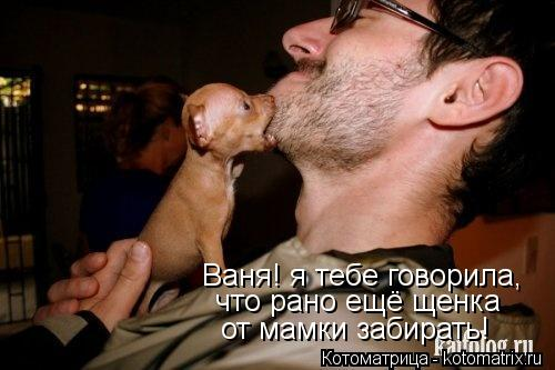 Котоматрица: Ваня! я тебе говорила, что рано ещё щенка  от мамки забирать!