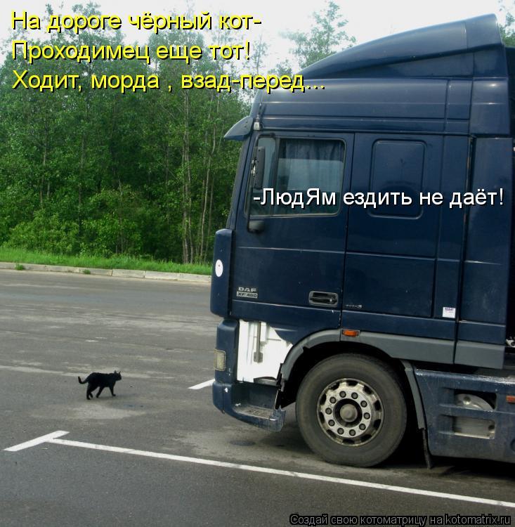 Котоматрица: На дороге чёрный кот- Проходимец еще тот! Ходит, морда , взад-перед... -ЛюдЯм ездить не даёт!