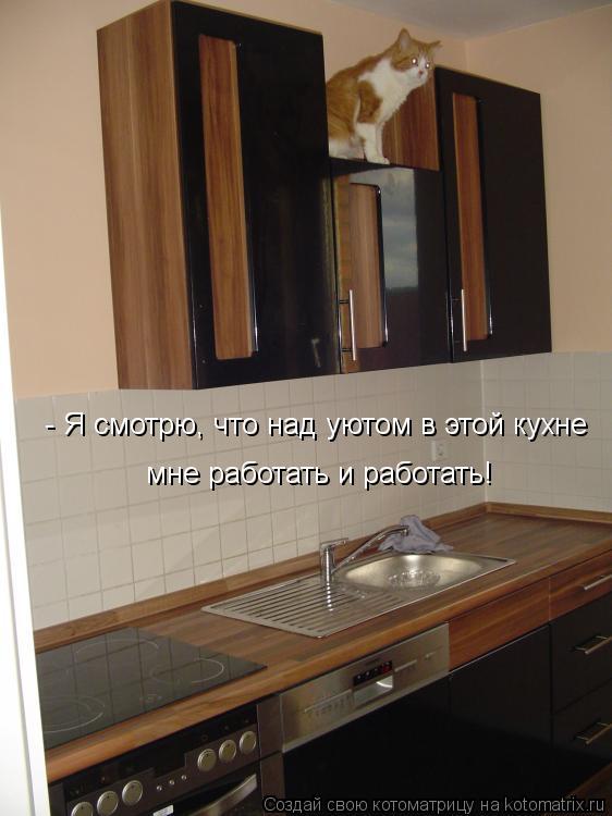 Котоматрица: - Я смотрю, что над уютом в этой кухне  мне работать и работать!