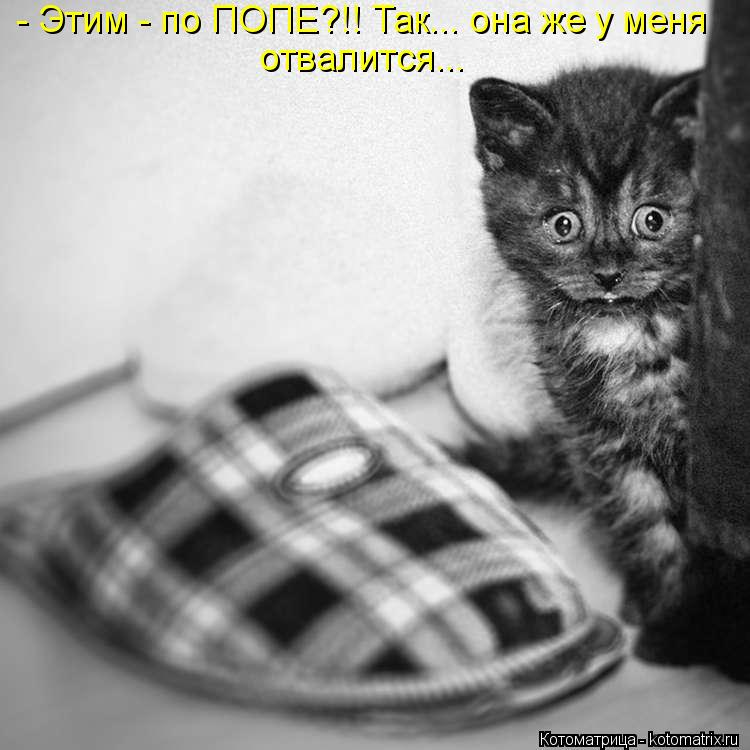 Котоматрица Kotomatritsa_Ag