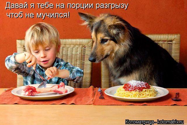 Котоматрица: Давай я тебе на порции разгрызу чтоб не мучился!