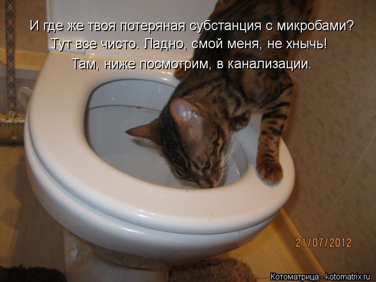 поступления хожу в туалет черной водой телефоны