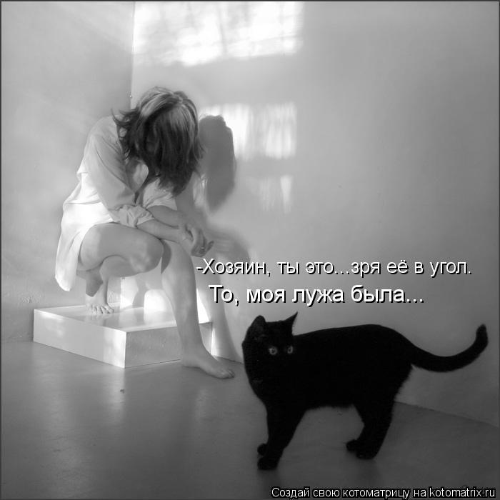 http://kotomatrix.ru/images/lolz/2013/01/17/kotomatritsa_mP.jpg
