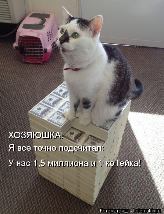 Котоматрица: ХОЗЯЮШКА! Я все точно подсчитал: У нас 1,5 миллиона и 1 коТейка!