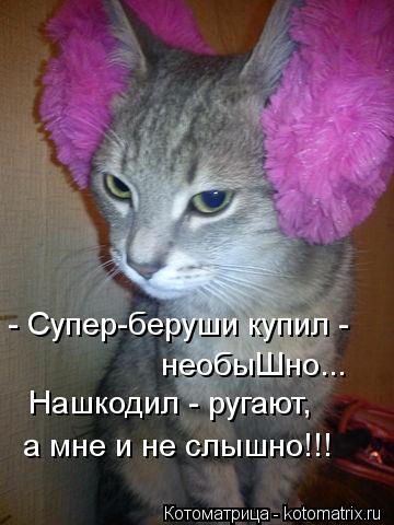 Котоматрица: - Супер-беруши купил -  необыШно... Нашкодил - ругают, а мне и не слышно!!!