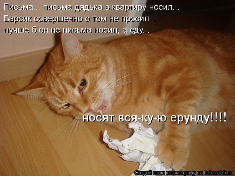 Котоматрица: Письма... письма дядька в квартиру носил... Барсик совершенно о том не просил... лучше б он не письма носил, а еду... носят вся-ку-ю ерунду!!!!