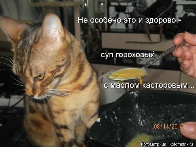 Котоматрица: Не особено это и здорово - с маслом касторовым... суп гороховый