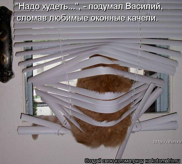 """Котоматрица: """"Надо худеть..."""", - подумал Василий,  сломав любимые оконные качели."""