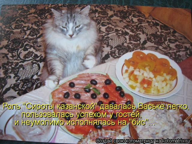 """Котоматрица: Роль """"Сироты казанской"""" давалась Ваське легко, пользовалась успехом у гостей,  и неумолимо исполнялась на """"бис""""..."""
