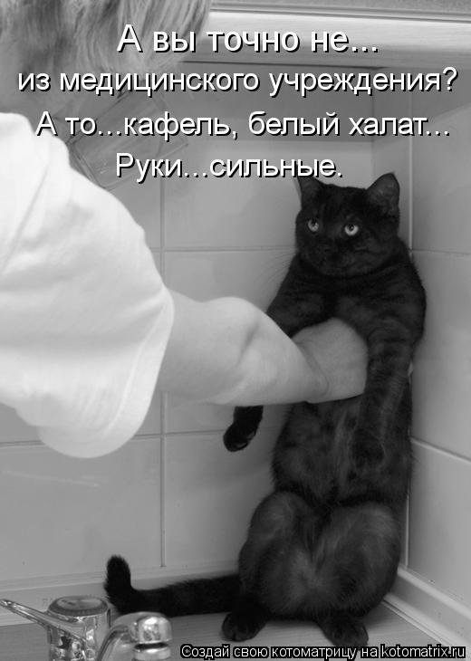 Котоматрица: А вы точно не... из медицинского учреждения? А то...кафель, белый халат... Руки...сильные.