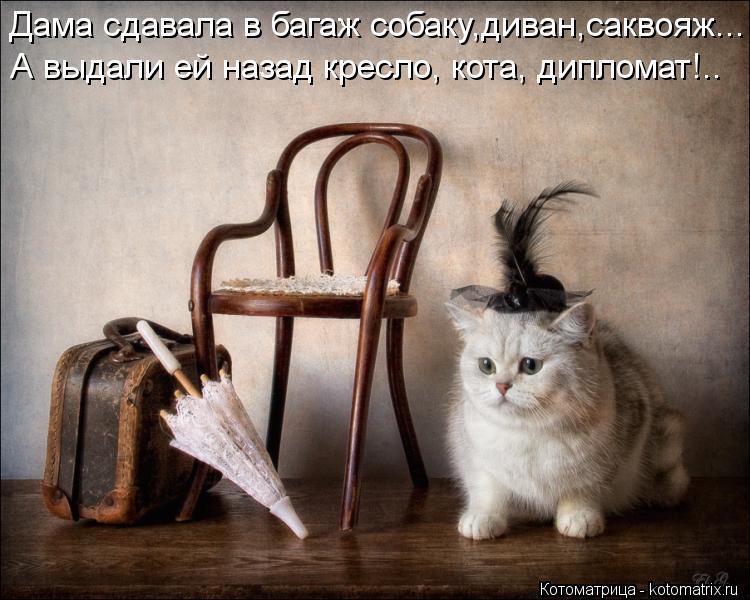 http://kotomatrix.ru/images/lolz/2013/01/22/kotomatritsa_tN.jpg