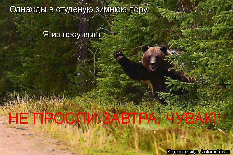 Котоматрица: Однажды в студёную зимнюю пору Я из лесу выш... НЕ ПРОСПИ ЗАВТРА, ЧУВАК!!!