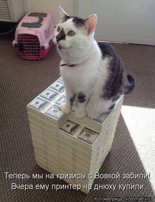 Котоматрица: Теперь мы на кризисы с Вовкой забили! Вчера ему принтер на днюху купили...
