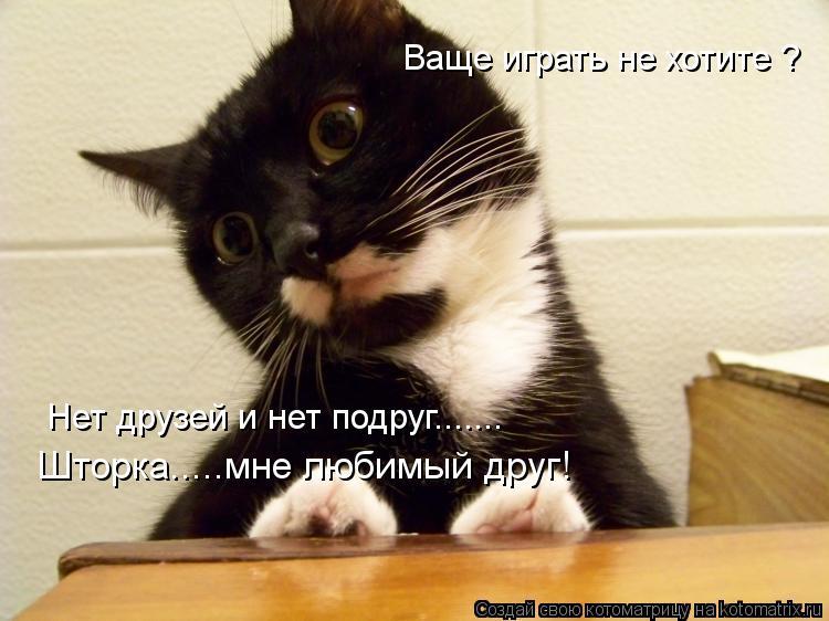 Котоматрица: Ваще играть не хотите ? Нет друзей и нет подруг....... Шторка.....мне любимый друг!