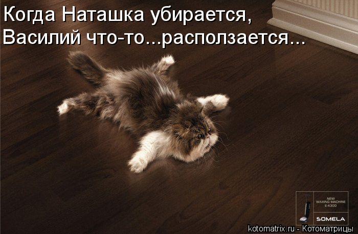 Котоматрица: Когда Наташка убирается, Василий что-то...расползается...