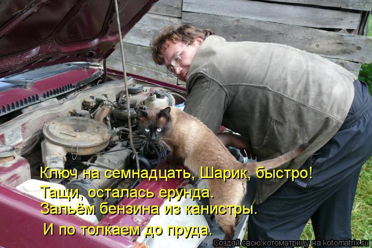 Котоматрица: Ключ на семнадцать, Шарик, быстро! Зальём бензина из канистры. Зальём бензина из канистры. И по толкаем до пруда. Тащи, осталась ерунда.