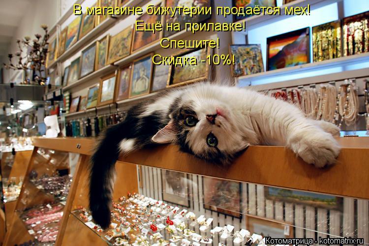 Котоматрица: В магазине бижутерии продаётся мех! Ещё на прилавке! Спешите! Скидка -10%!