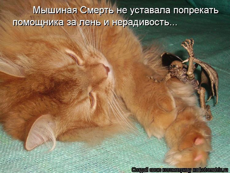 Котоматрица: Мышиная Смерть не уставала попрекать помощника за лень и нерадивость...