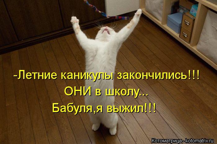 Котоматрица: -Летние каникулы закончились!!! ОНИ в школу... Бабуля,я выжил!!!