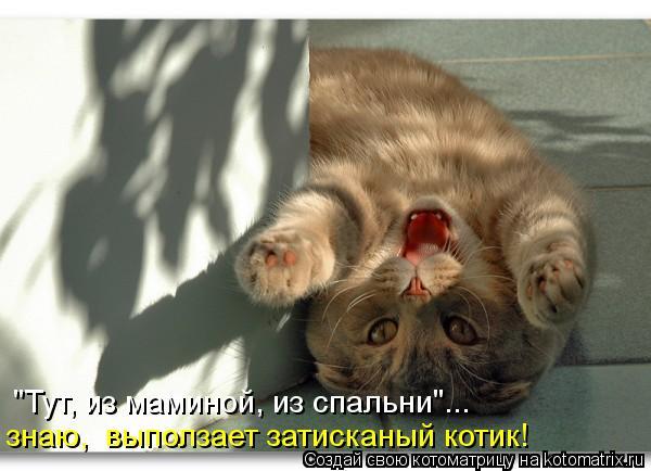 """Котоматрица: """"Тут, из маминой, из спальни""""...  знаю,  выползает затисканый котик!"""