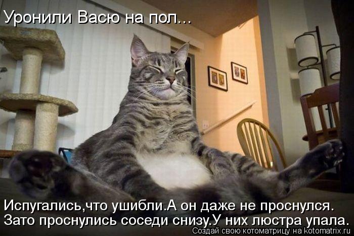 Котоматрица: Уронили Васю на пол... Испугались,что ушибли.А он даже не проснулся. Зато проснулись соседи снизу.У них люстра упала.