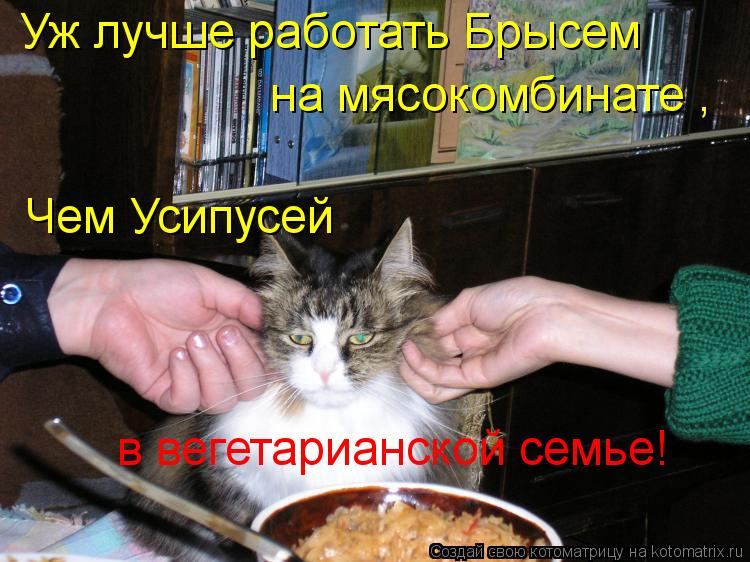 Котоматрица: Уж лучше работать Брысем  на мясокомбинате , Чем Усипусей в вегетарианской семье!