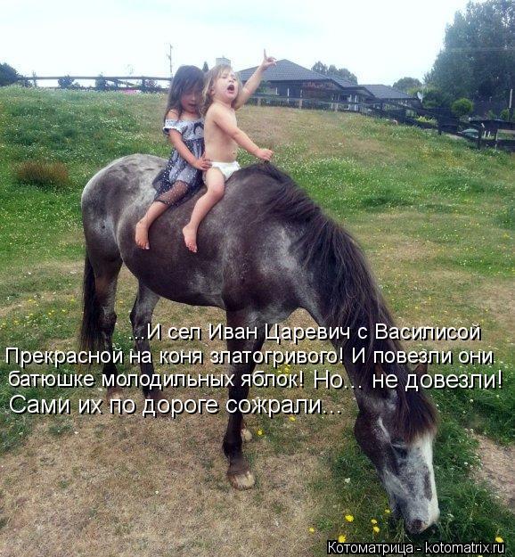 Котоматрица: ...И сел Иван Царевич с Василисой Прекрасной на коня златогривого! И повезли они  батюшке молодильных яблок!  Но... не довезли! Сами их по дорог