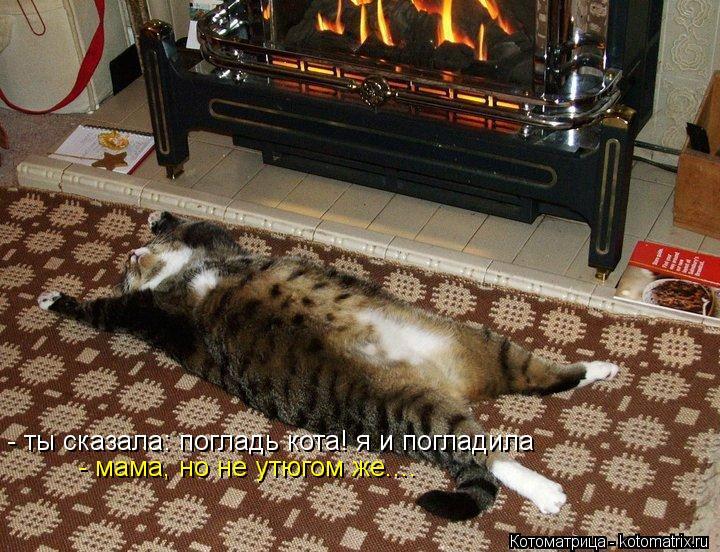 Котоматрица: - мама, но не утюгом же.... - ты сказала: погладь кота! я и погладила