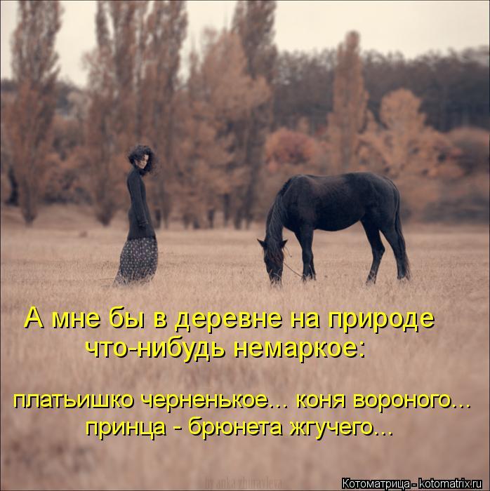 Котоматрица: А мне бы в деревне на природе что-нибудь немаркое: платьишко черненькое... коня вороного... принца - брюнета жгучего...