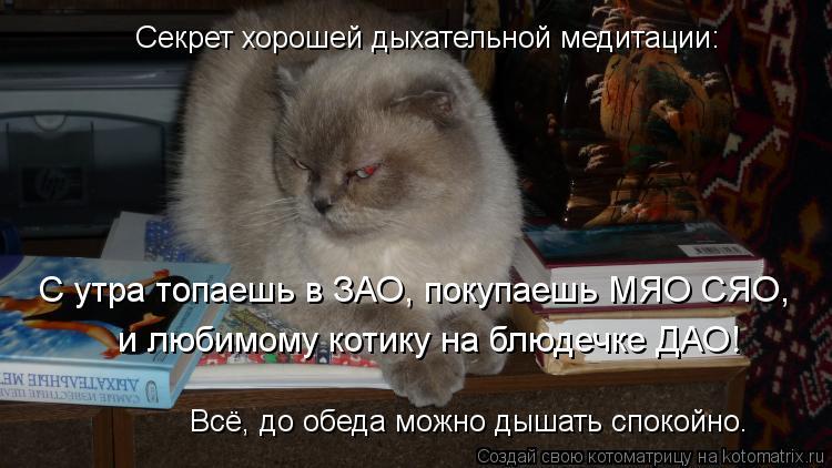 Котоматрица: Секрет хорошей дыхательной медитации: С утра топаешь в ЗАО, покупаешь МЯО СЯО, и любимому котику на блюдечке ДАО! Всё, до обеда можно дышать