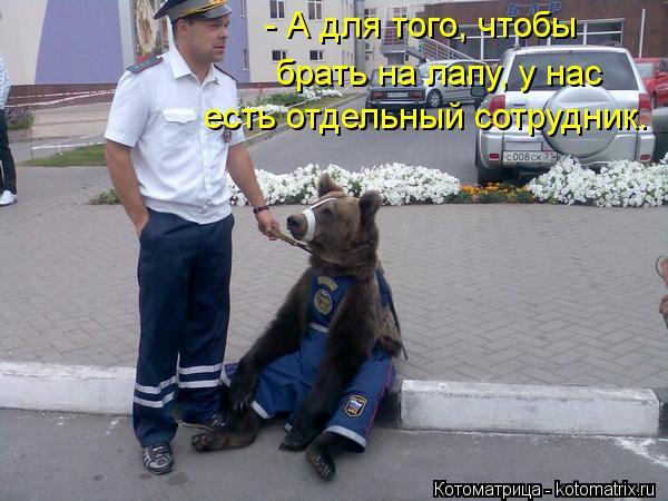 Котоматрица: - А для того, чтобы  брать на лапу, у нас  есть отдельный сотрудник.