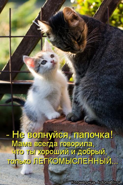 Котоматрица: - Не волнуйся, папочка! Мама всегда говорила, что ты хороший и добрый, только ЛЕГКОМЫСЛЕННЫЙ...