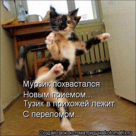 Котоматрица: Мурзик похвастался   Новым приемом... Тузик в прихожей лежит. С переломом...