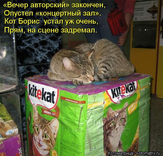 Котоматрица: «Вечер авторский» закончен, Опустел «концертный зал». Кот Борис  устал уж очень, Прям, на сцене задремал.