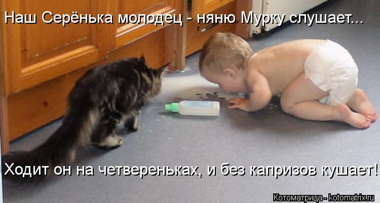 Котоматрица: Наш Серёнька молодец - няню Мурку слушает... Ходит он на четвереньках, и без капризов кушает!