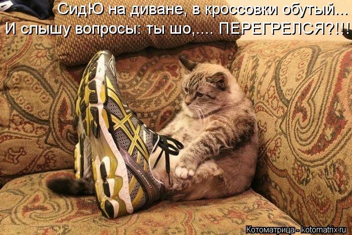Котоматрица: СидЮ на диване, в кроссовки обутый... И слышу вопросы: ты шо,.... ПЕРЕГРЕЛСЯ?!!!