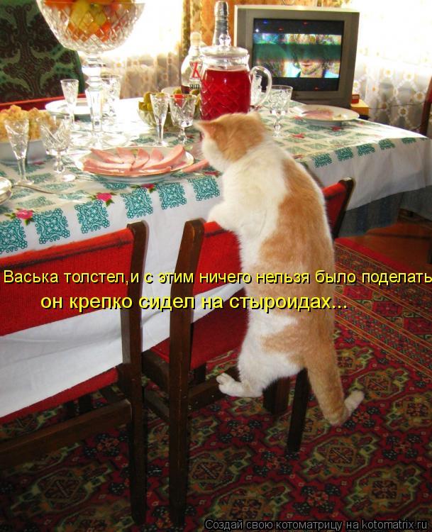 Котоматрица: Васька толстел,и с этим ничего нельзя было поделать: он крепко сидел на стыроидах...
