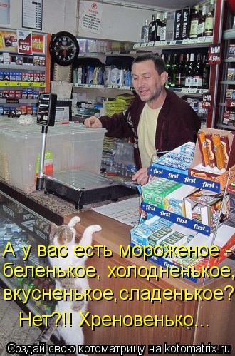 Котоматрица: А у вас есть мороженое -  беленькое, холодненькое,  вкусненькое,сладенькое?  Нет?!! Хреновенько...