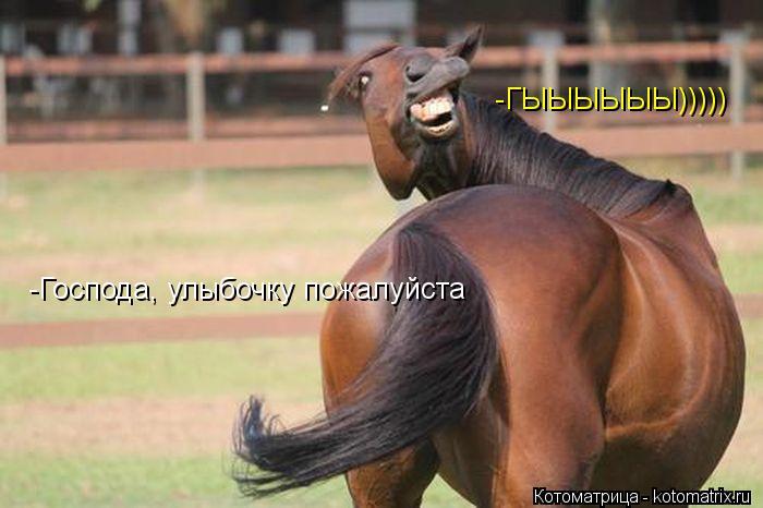 Котоматрица: -Господа, улыбочку пожалуйста -ГЫЫЫЫЫЫ)))))