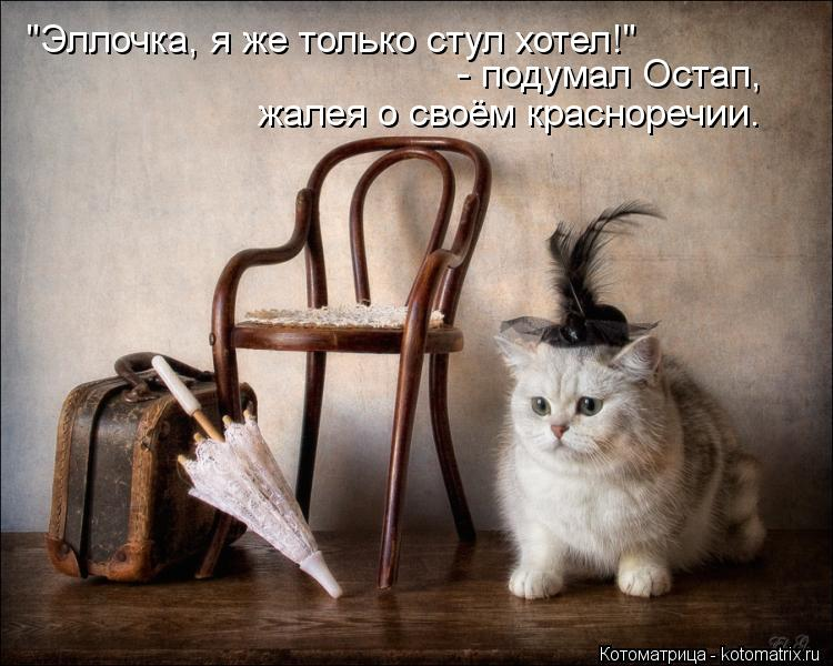 """Котоматрица: """"Эллочка, я же только стул хотел!"""" - подумал Остап,  жалея о своём красноречии."""