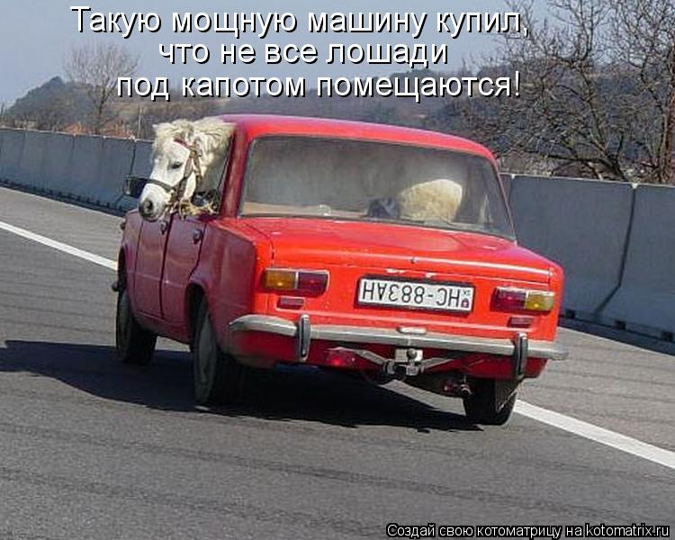 Котоматрица: Такую мощную машину купил, что не все лошади  под капотом помещаются!