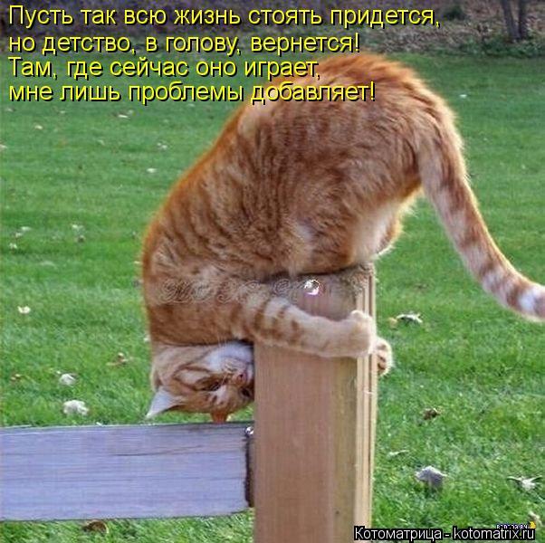 Котоматрица: Пусть так всю жизнь стоять придется,  но детство, в голову, вернется! Там, где сейчас оно играет,  мне лишь проблемы добавляет!