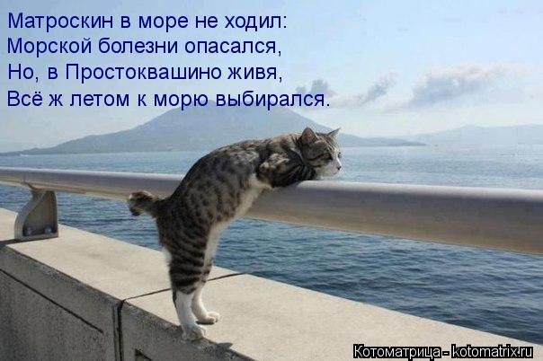 Котоматрица: Матроскин в море не ходил: Морской болезни опасался, Но, в Простоквашино живя, Всё ж летом к морю выбирался.