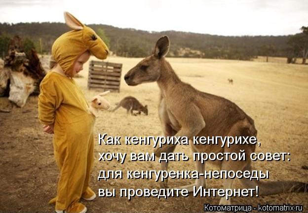 Котоматрица: Как кенгуриха кенгурихе, хочу вам дать простой совет: для кенгуренка-непоседы вы проведите Интернет!