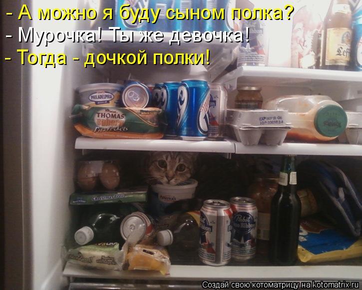 http://kotomatrix.ru/images/lolz/2013/02/07/kotomatritsa_nH.jpg