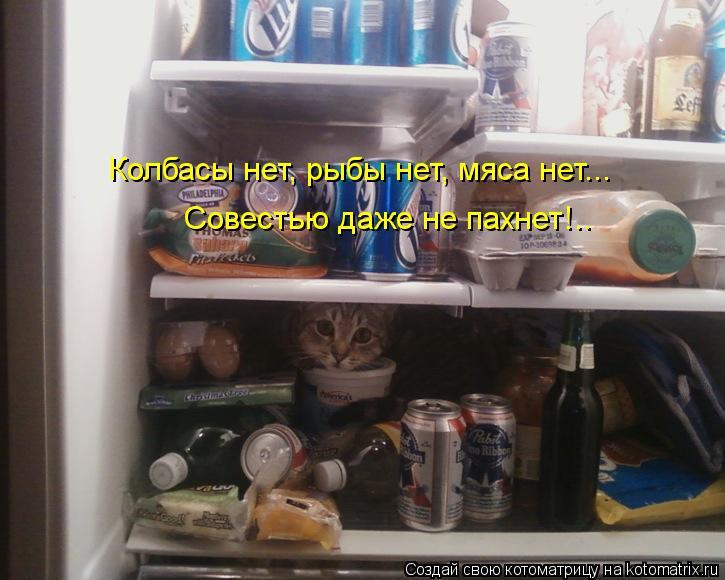 Котоматрица: Колбасы нет, рыбы нет, мяса нет... Совестью даже не пахнет!..