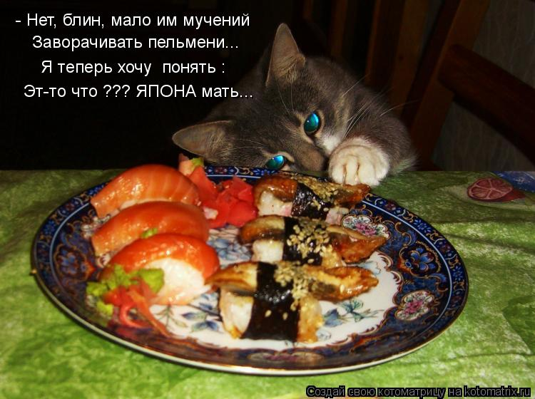 http://kotomatrix.ru/images/lolz/2013/02/08/kotomatritsa_To.jpg