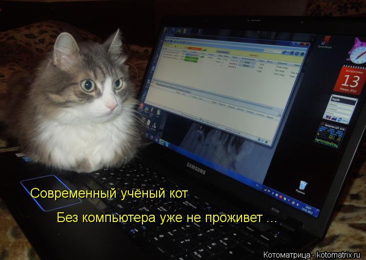 Котоматрица: Современный учёный кот Современный учёный кот Без компьютера уже не проживет ...