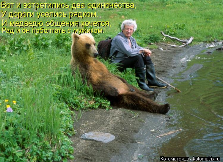 Котоматрица: Вот и встретились два одиночества, У дороги уселись рядком. И медведю общения хочется, Рад и он поболтать с мужиком.