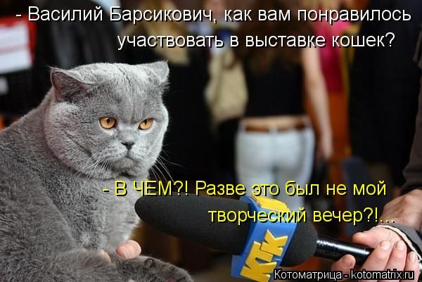 Котоматрица: участвовать в выставке кошек? - Василий Барсикович, как вам понравилось  - В ЧЕМ?! Разве это был не мой  творческий вечер?!...